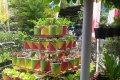 Lomba Kampung Organik dan Lomba Bank Sampah Tingkat Kota Magelang Tahun 2017